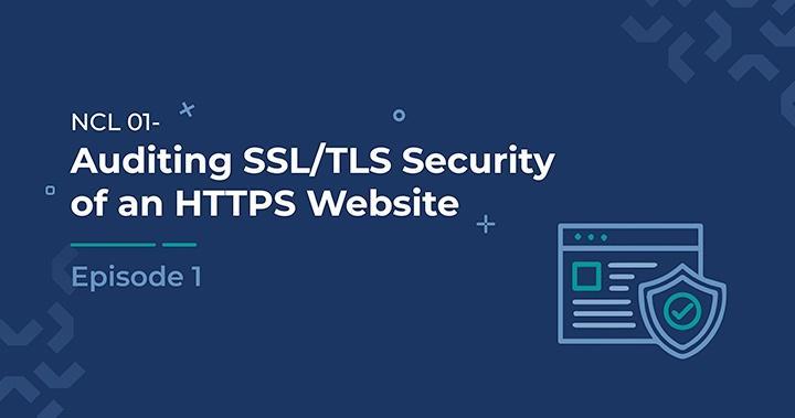 Auditing SSL/TLS Security of an HTTPS Website